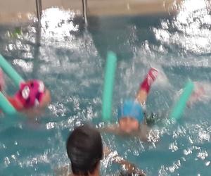 Actividad de natación para niños de 1 a 3 años.