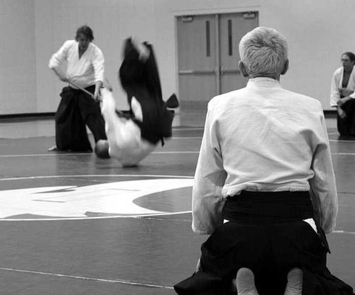 Hapkido: Clases de Ultra Gym