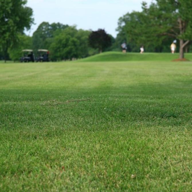 Beneficios del tratamiento de aguas para campos de golf