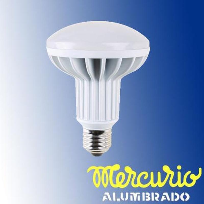 Reflectora LED R-90 Asturias