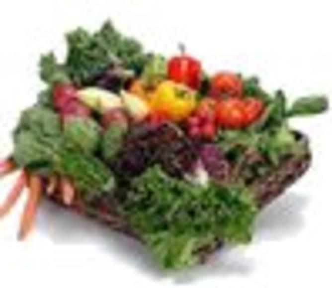 TRATAMIENTOS DE NUTRICIÓN: Servicios de Axis Clínica De Fisioterapia