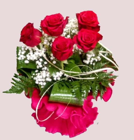 Rosas rojas : Catálogo de Regalos de Floresdalia.com