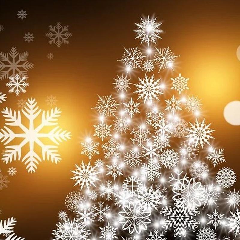 Menú Infantil Navidad 2020-21: Nuestra Carta y Menús de Restaurante Mesón Del Cid