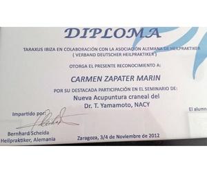 Titulación para la nueva acupuntura craneal