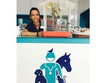 Medicina general: Servicios de Clínica Veterinaria Roncal