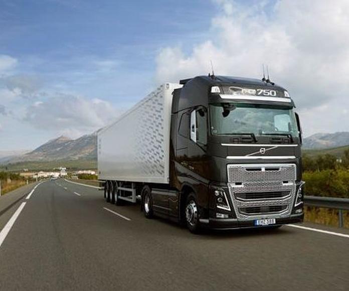 Tasa de camiones