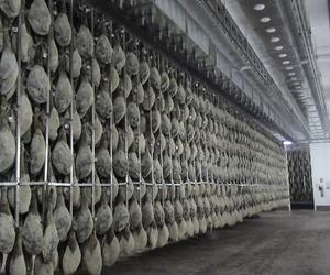 Raíles para secaderos