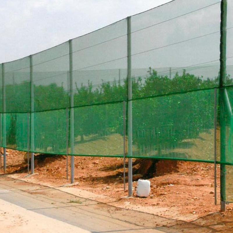Cortavientos: Invernaderos de Invernaderos Campos