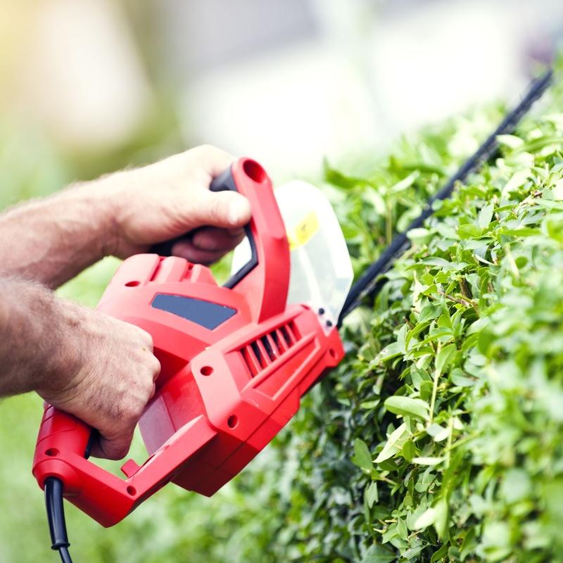 Jardinería: Servicios de ATYS Multiservicios