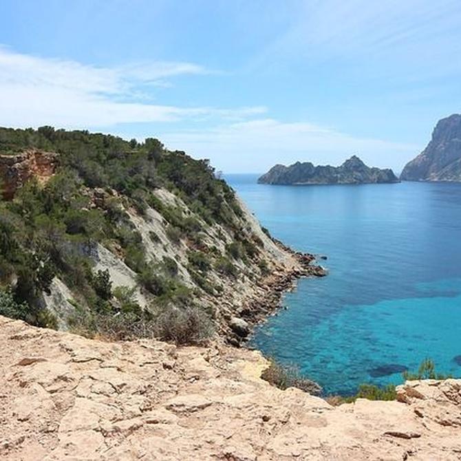Pescados y mariscos de Ibiza
