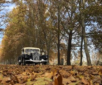 Rolls Royce 25/30: Vehículos de Iberocab Bodas