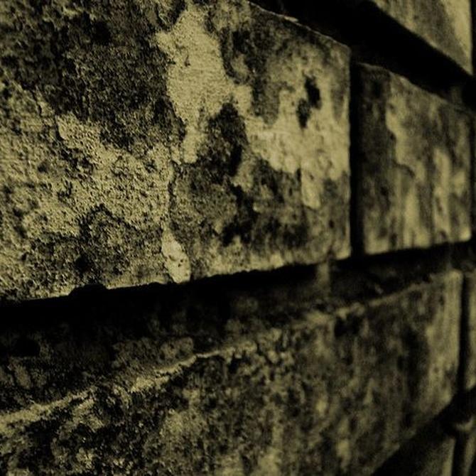 Cómo prevenir la aparición de humedad en nuestras paredes