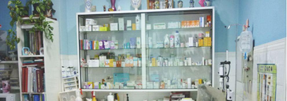 Veterinarios en Madrid | Clínica Veterinaria Selva