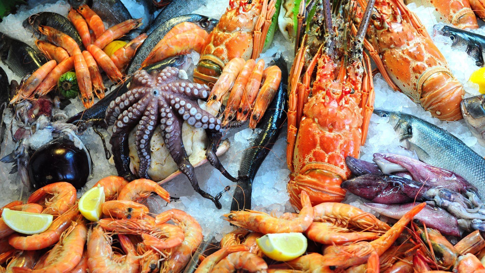 Venta de pescado y mariscos al por mayor en Noia