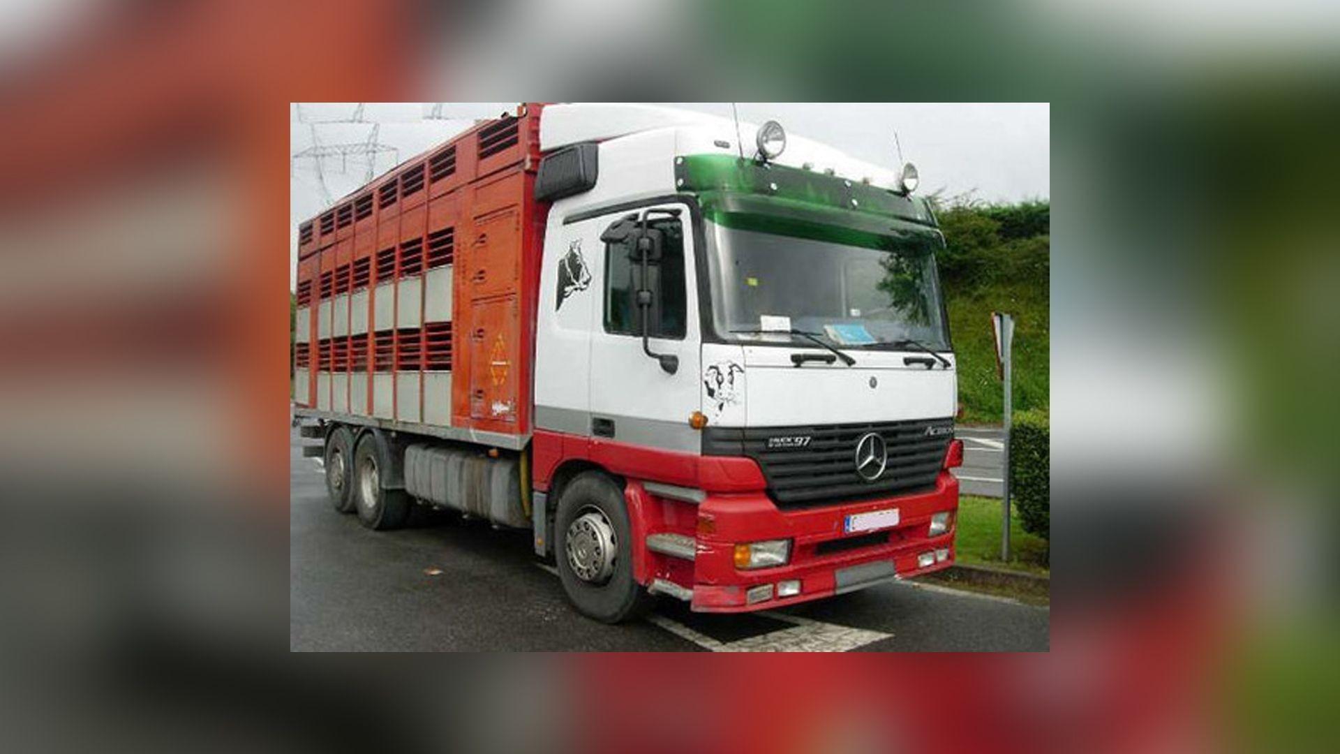 Empresa de transporte de animales en Vizcaya