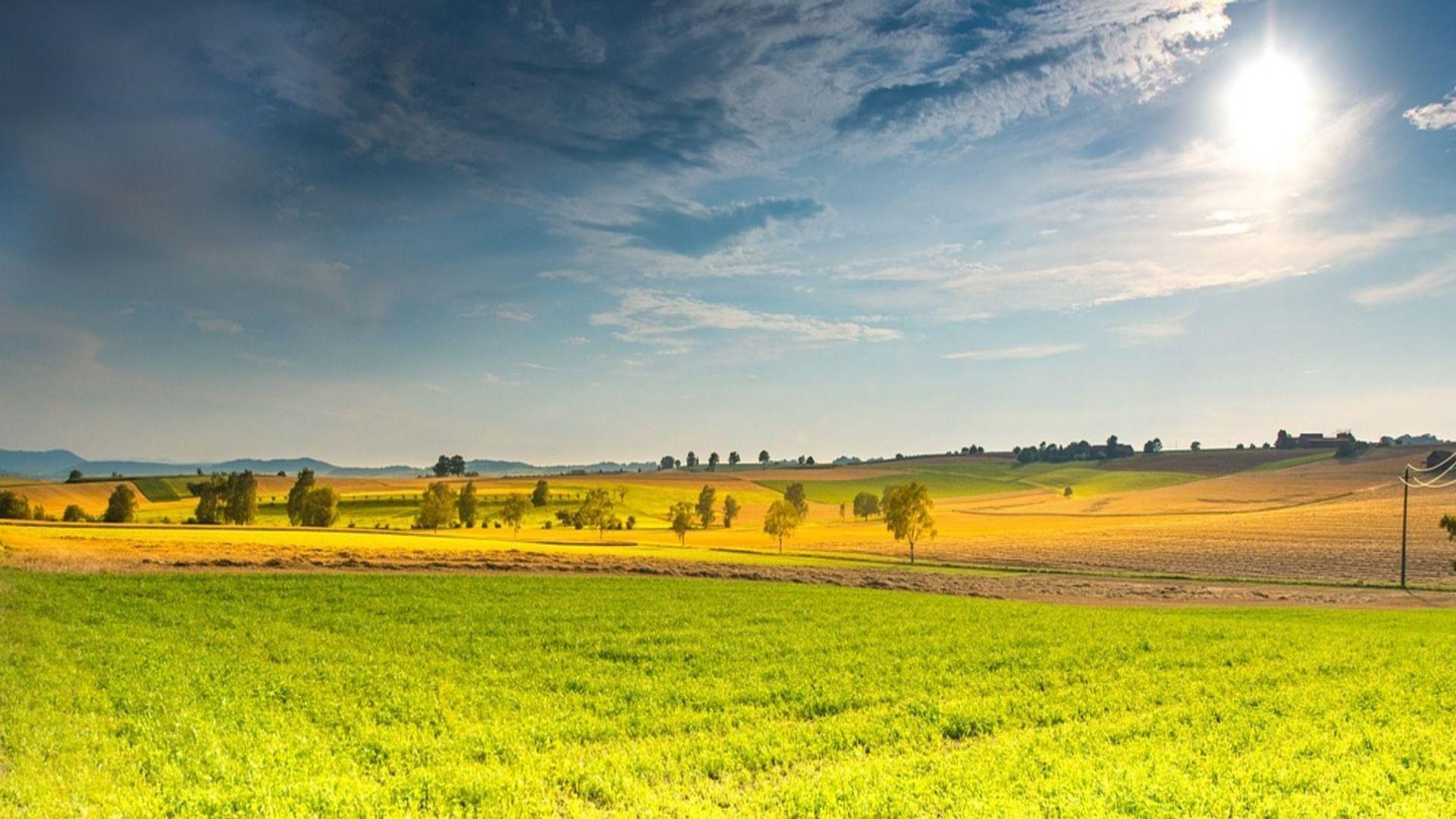 landscape-666927_1280 (1)