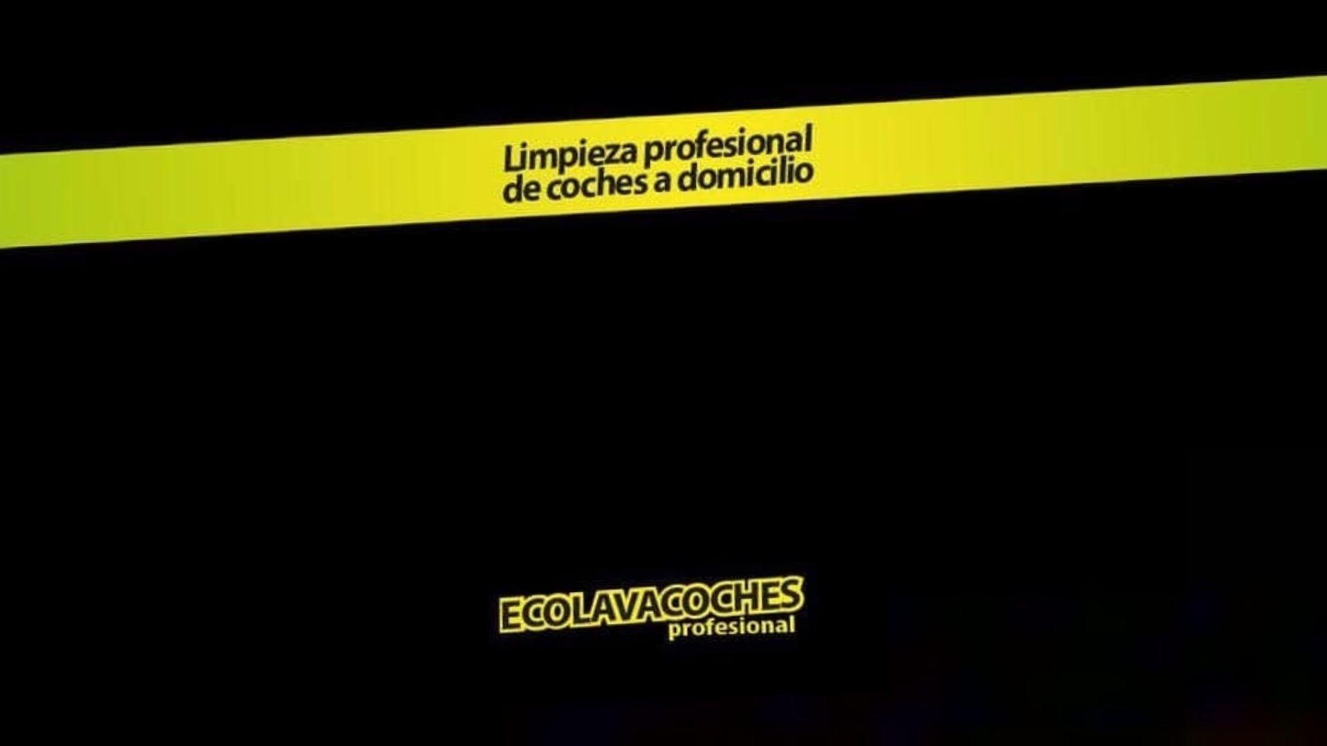 Limpieza profesional de coches a domicilio en Málaga