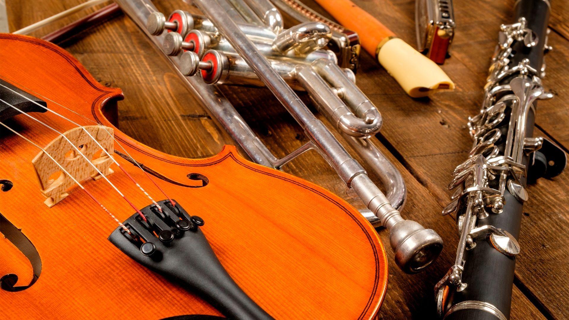 Tienda de instrumentos música en Miraflores de la Sierra