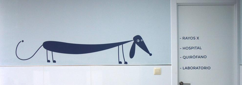 Centro veterinario Godelleta