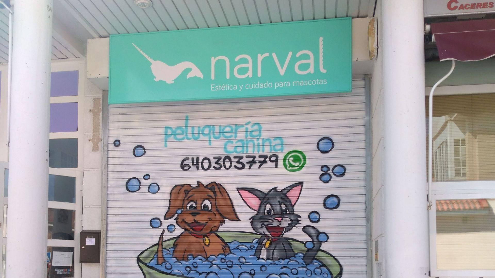 peluqueria canina y felina leganes