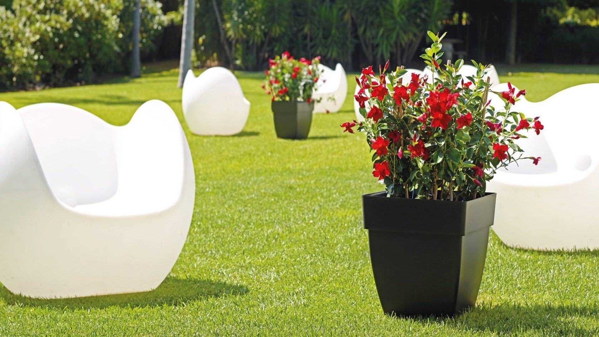 Diseño de jardines en Monforte de Lemos