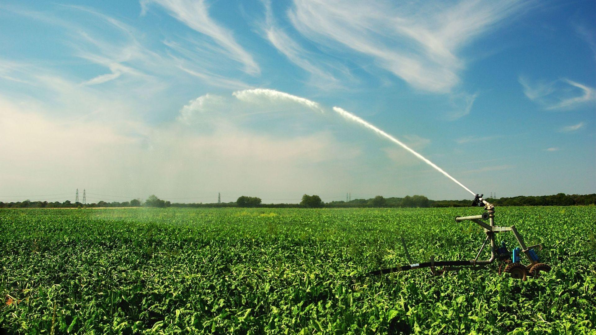 Modificación de sistemas de riego L'Aldea