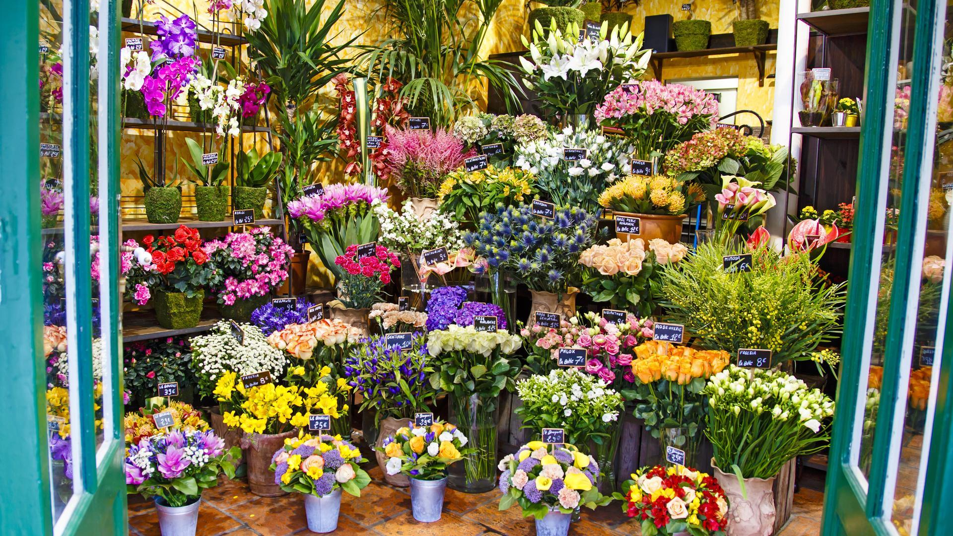 Resultado de imagen de floristeria