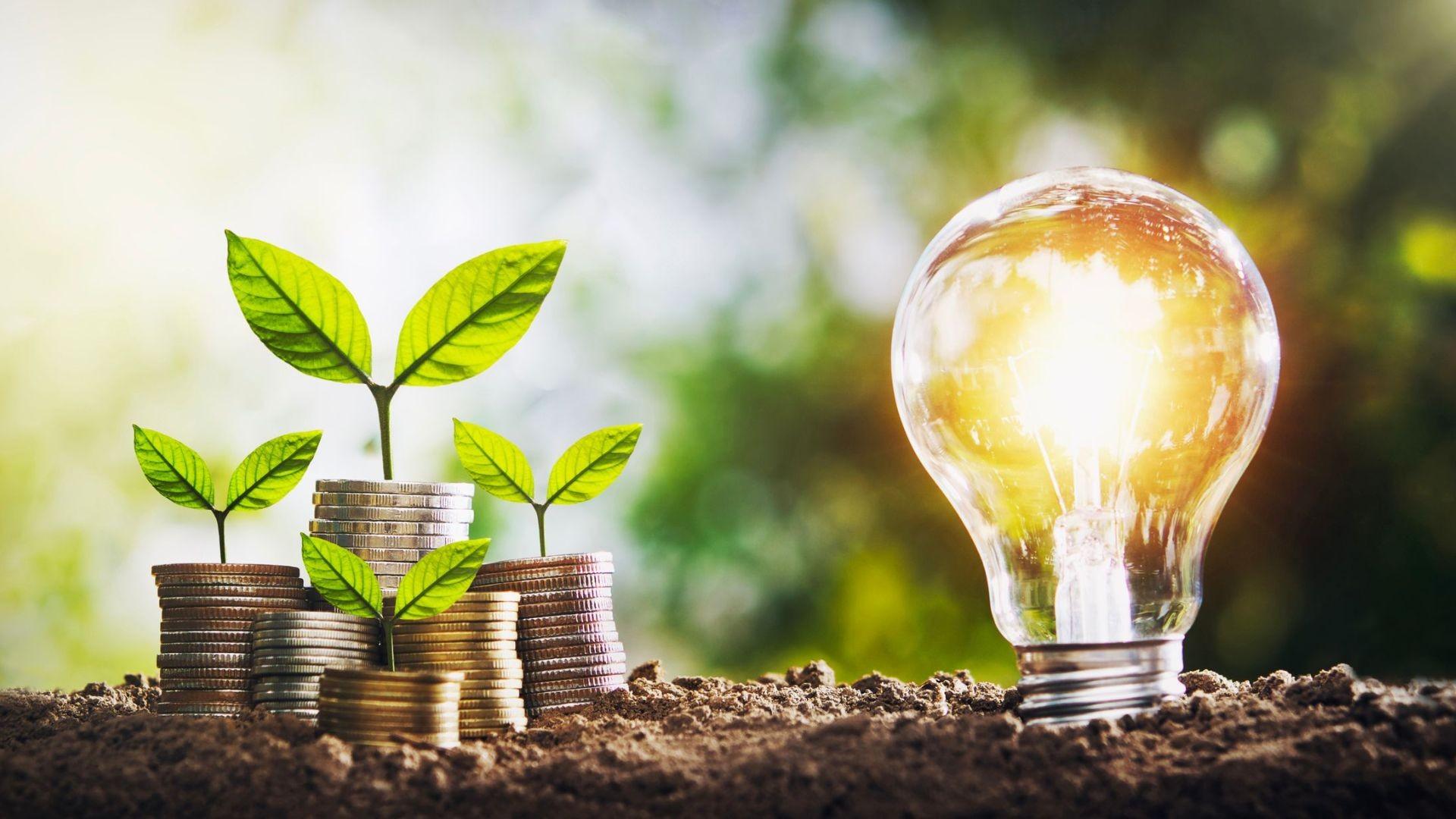 ahorro energetico empresas Alicante