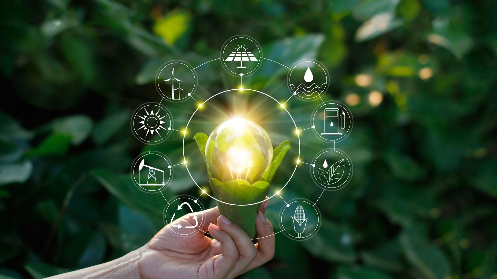Empresas de energías renovables en Alicante