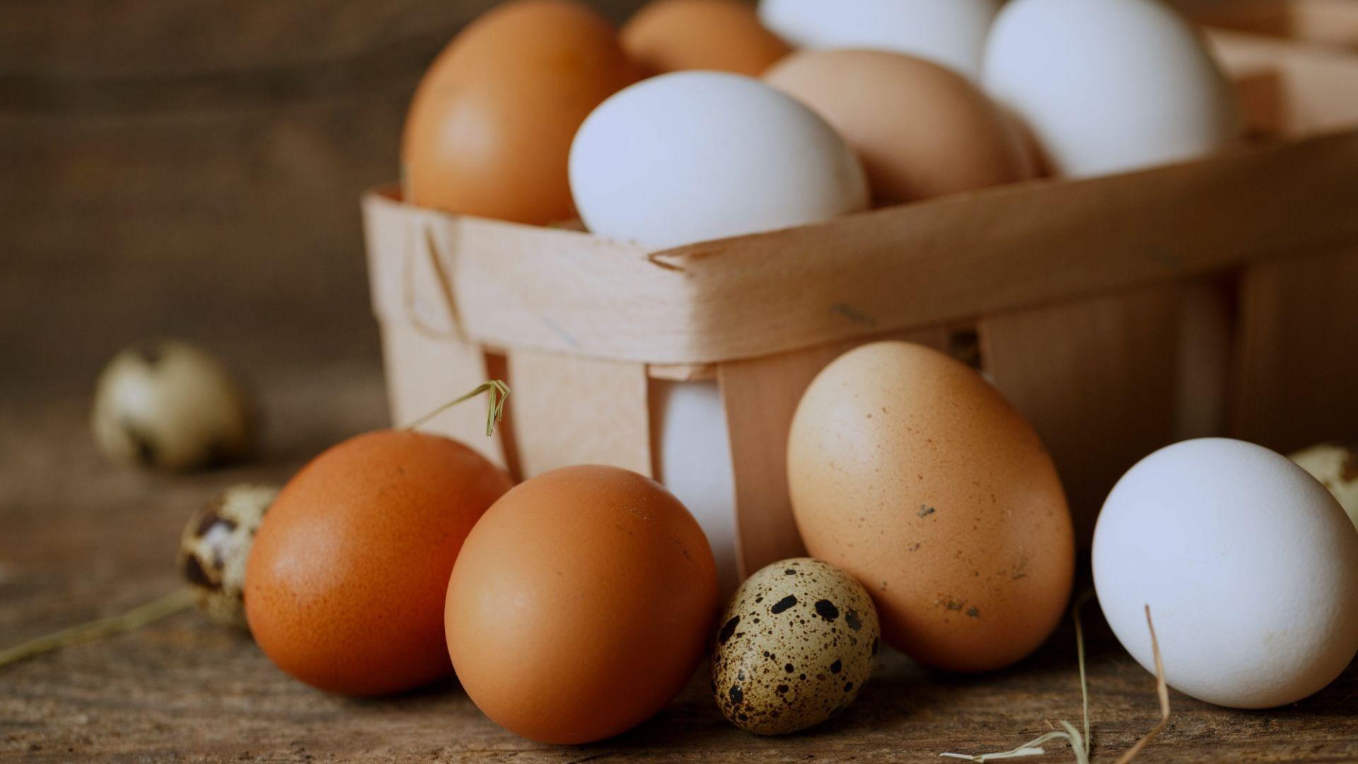 Pollos y huevos de granja en Almería