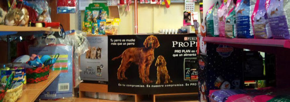 Peluquerías caninas en Madrid | Mundo Perruno