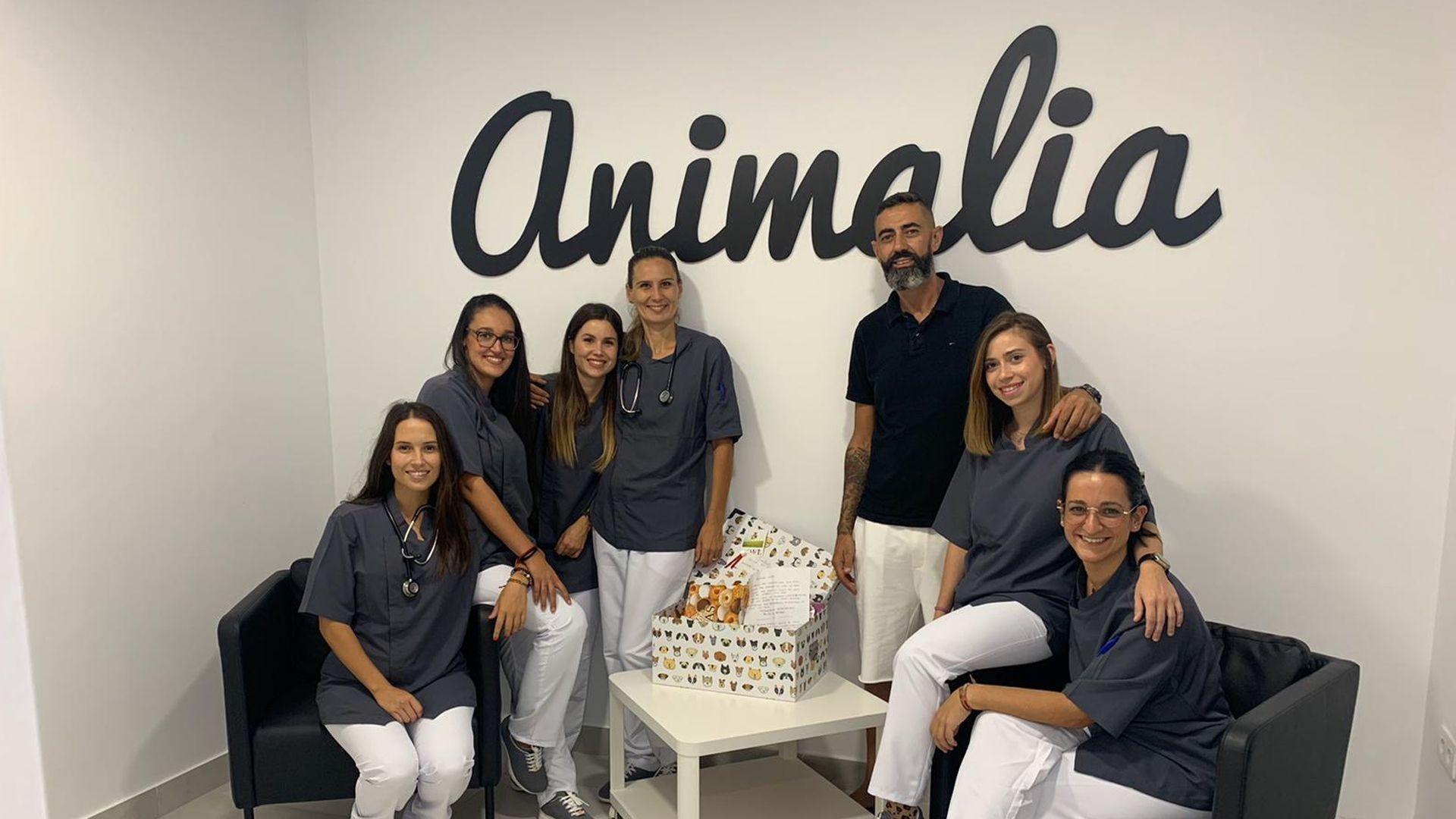 Centro veterinario en Santa Cruz de Tenerife