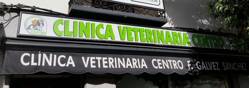 Veterinarios en Torrejón de Ardoz | Clínica Veterinaria Centro