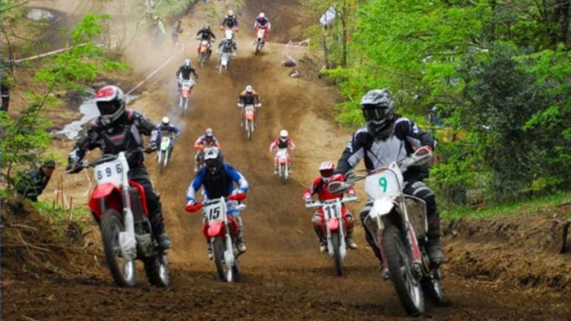 green motos