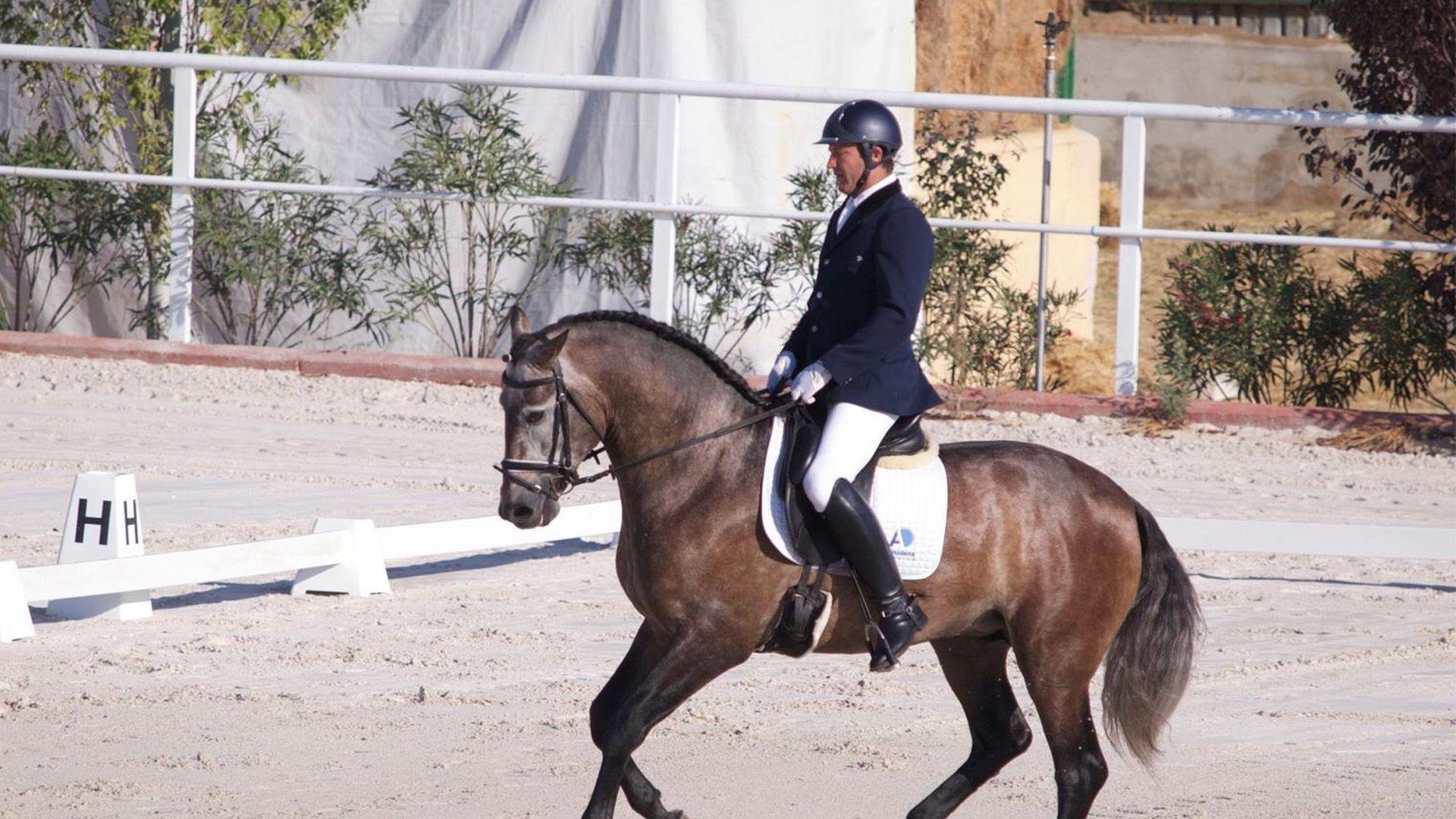 Centro hípico con cursos de equitación en Colmenar Viejo