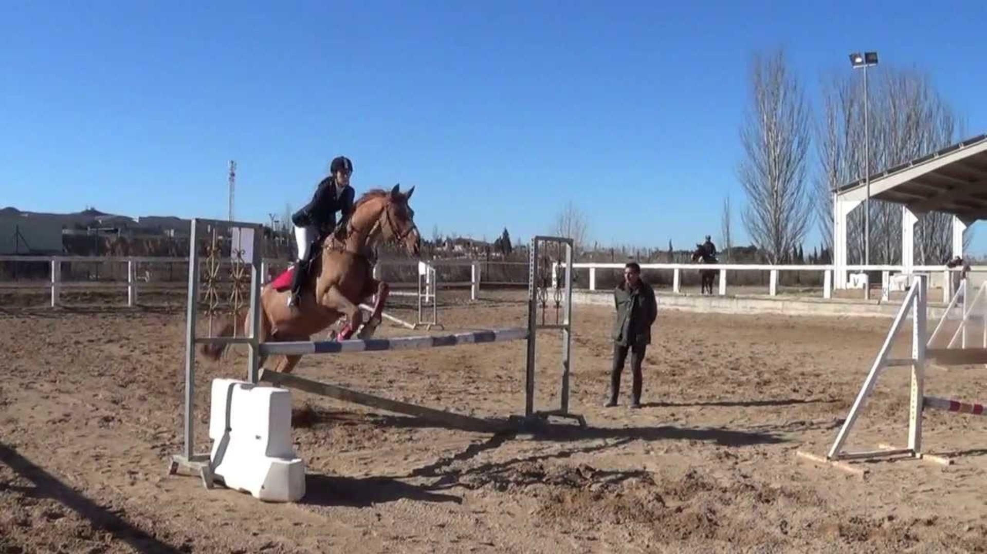 clases de salto a caballo Zaragoza