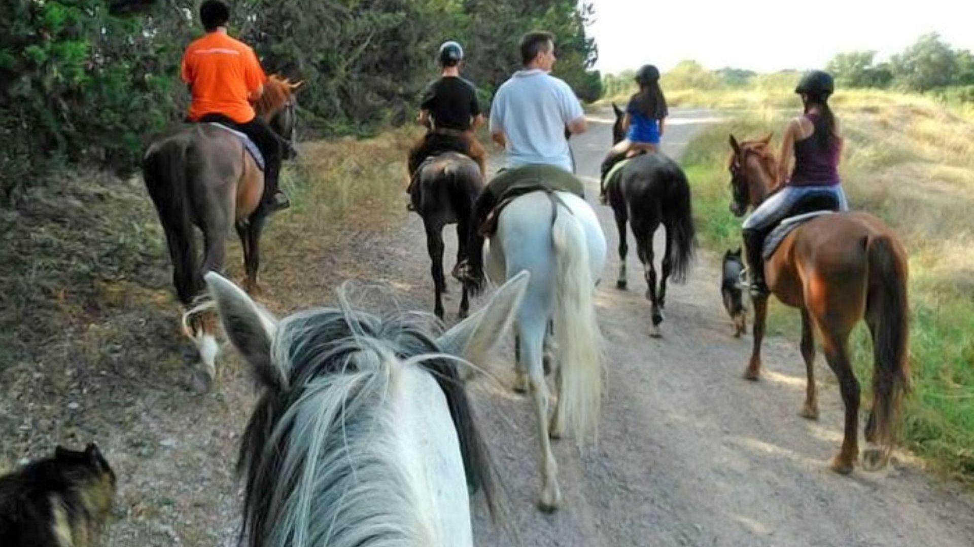 Rutas a caballo Zaragoza (1)