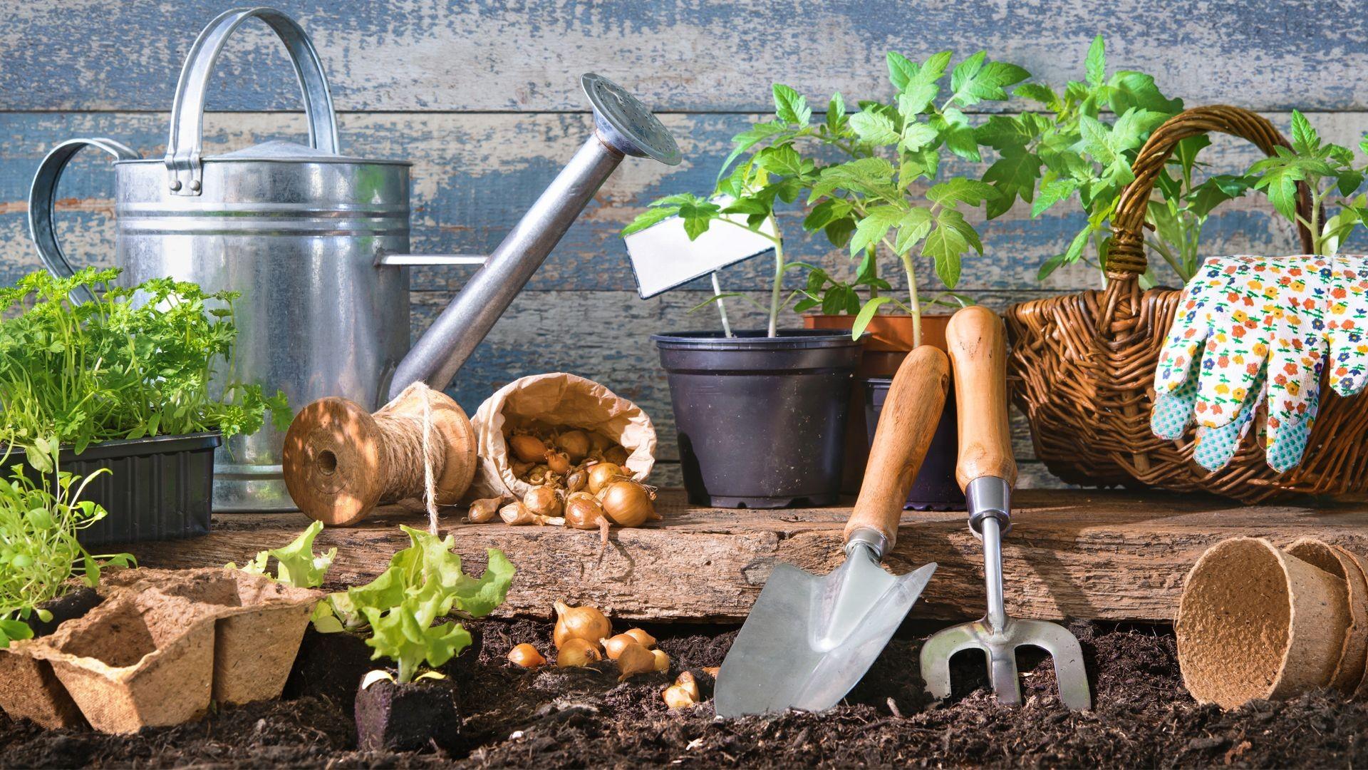 Artículos de jardinería en Melgar de Fernamental