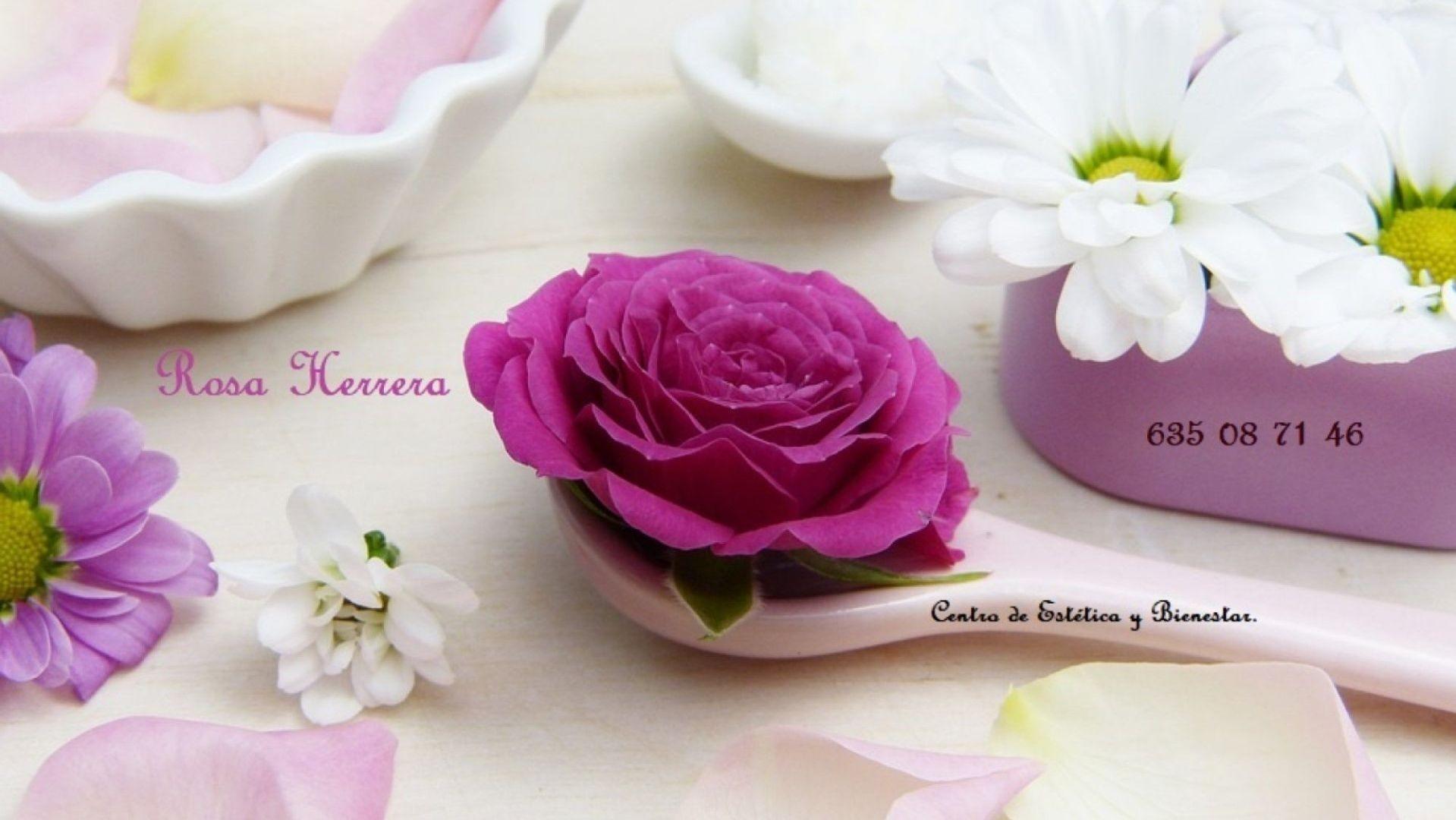 rosa herrera
