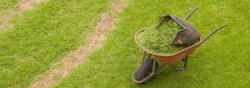 Sistemas de riego para jardines en Cangas | Paralaia Xardins