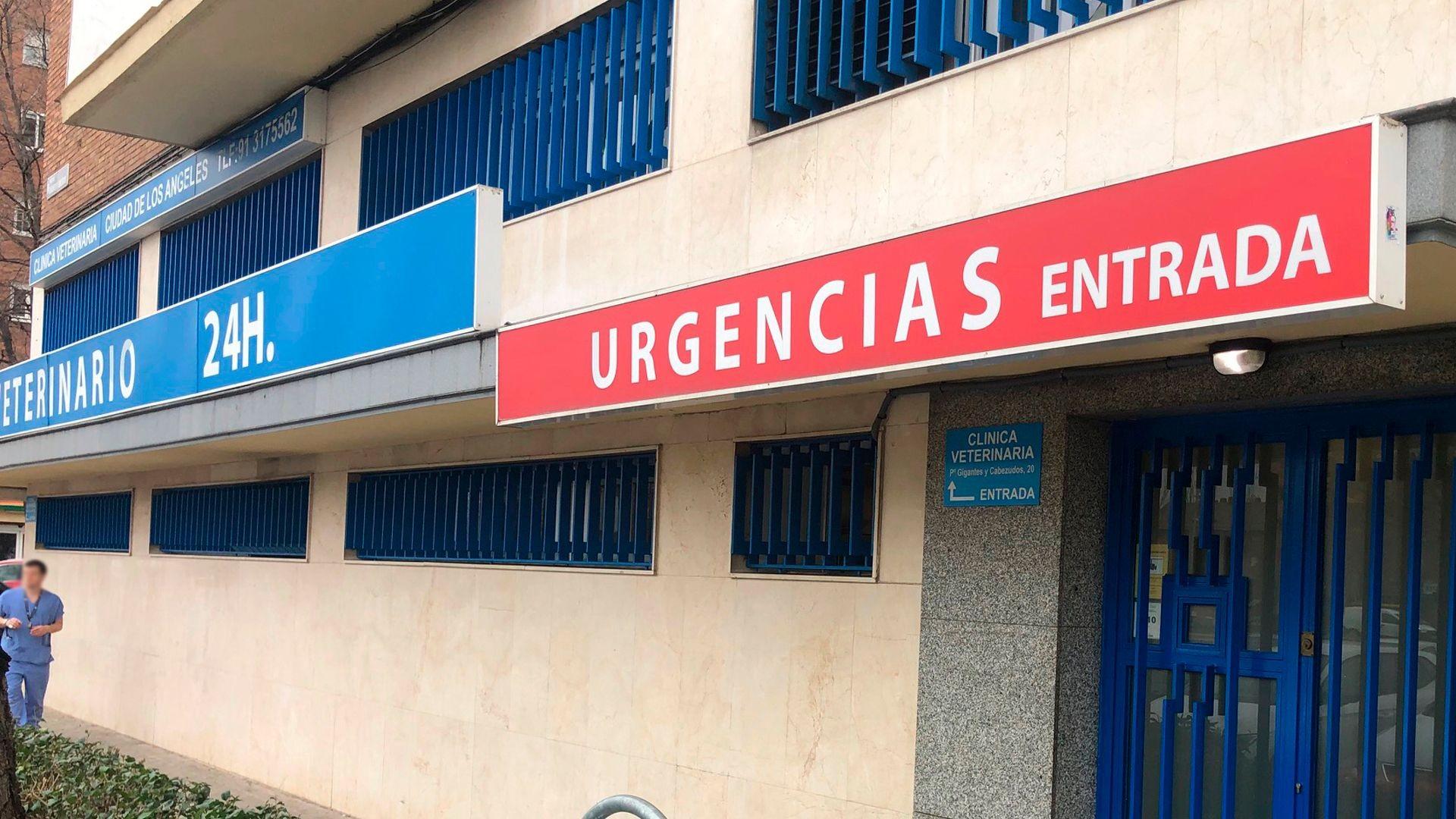 Urgencias veterinarias en Madrid