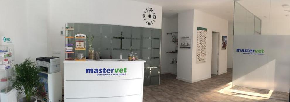 Veterinarios para animales exóticos en Mirasierra, Madrid | Mastervet Mirasierra