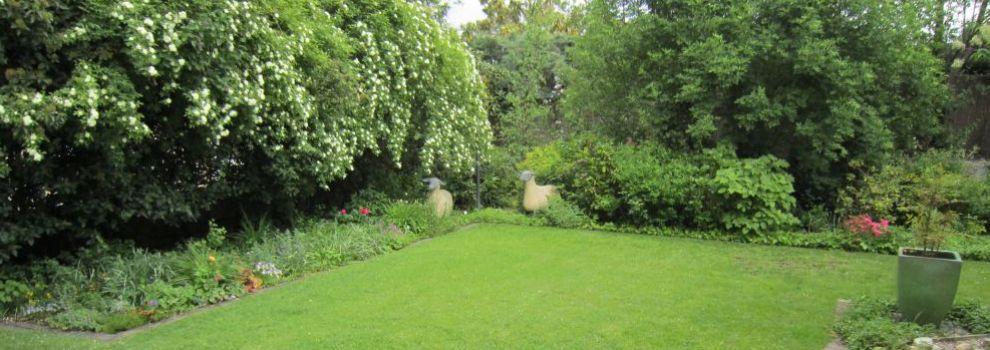 mantenimiento de jardines en a coru a jardiner a suso
