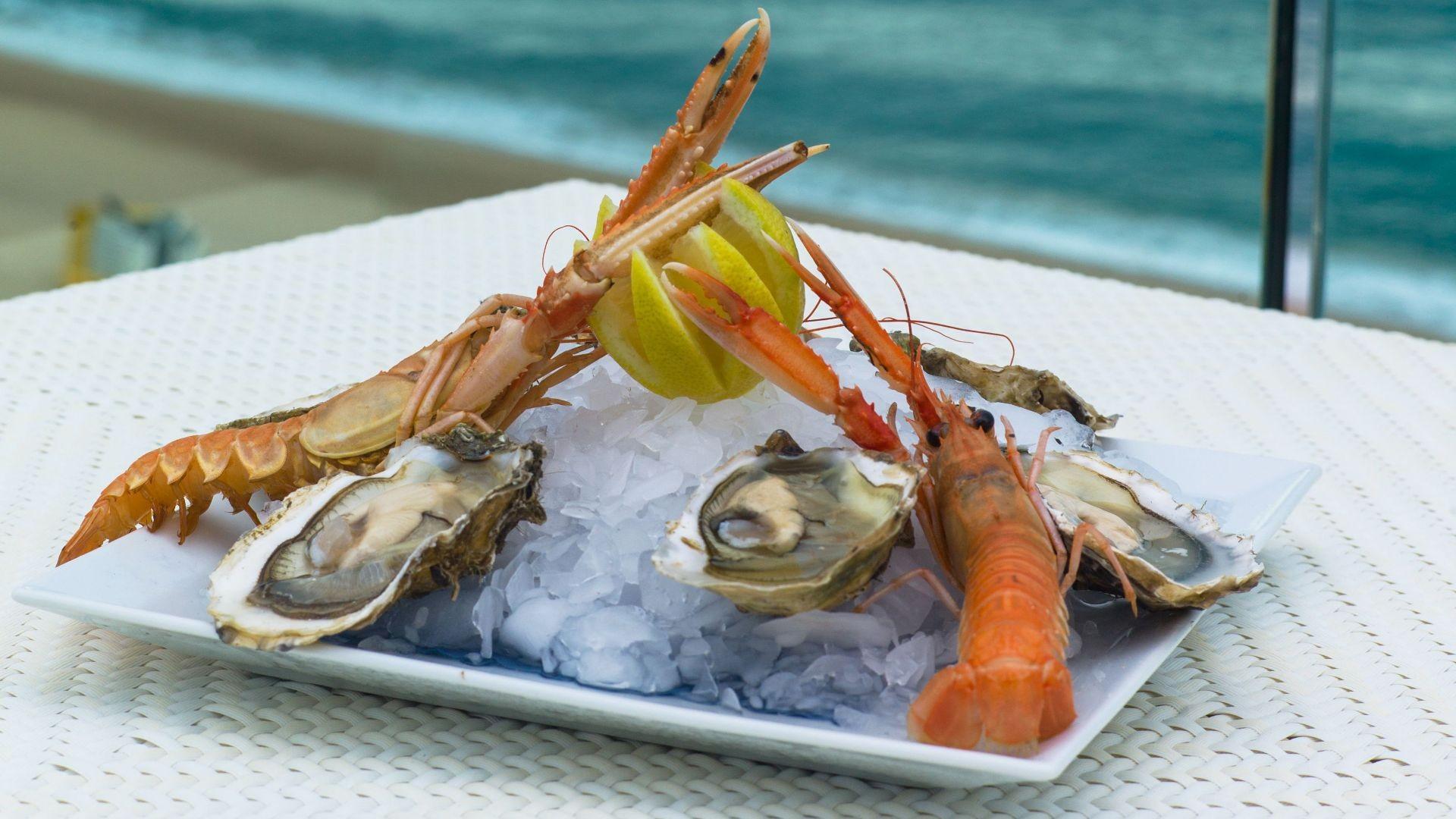 Amplia oferta gastronómica, restaurante en Ibiza