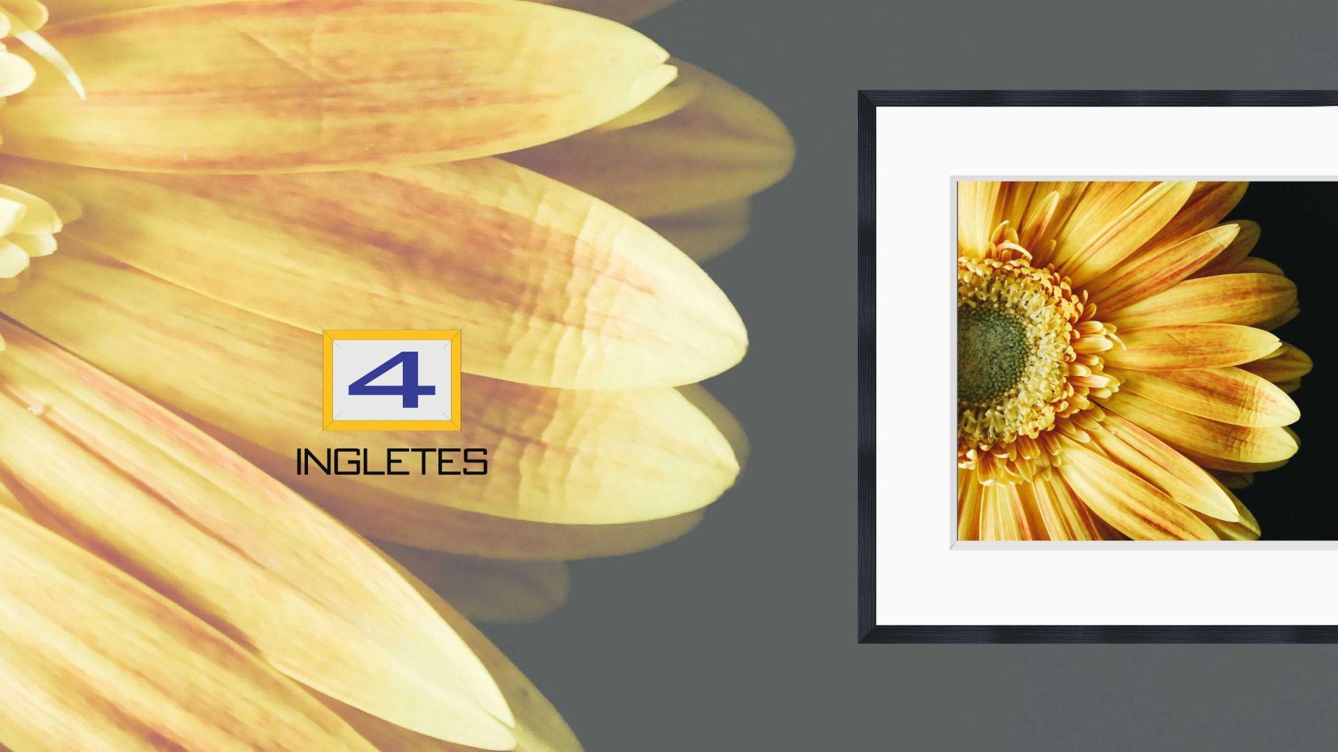 flor amarilla portada