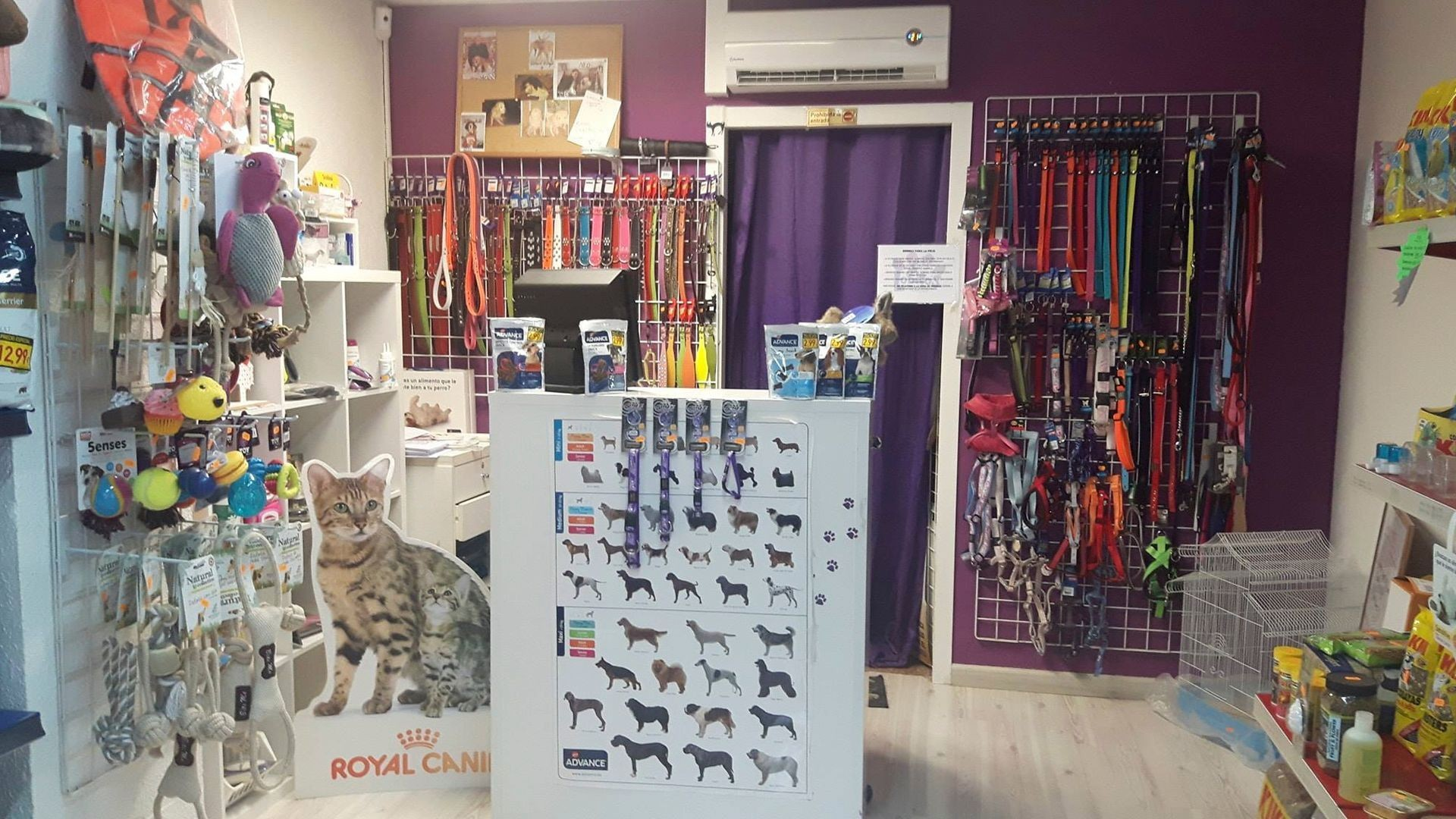 Todo para tus mascotas en Alicante
