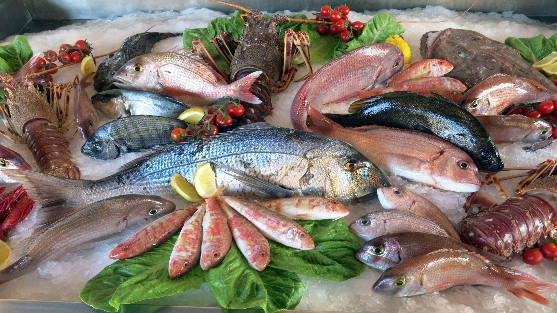 Pescado y marisco frescos en Vitoria