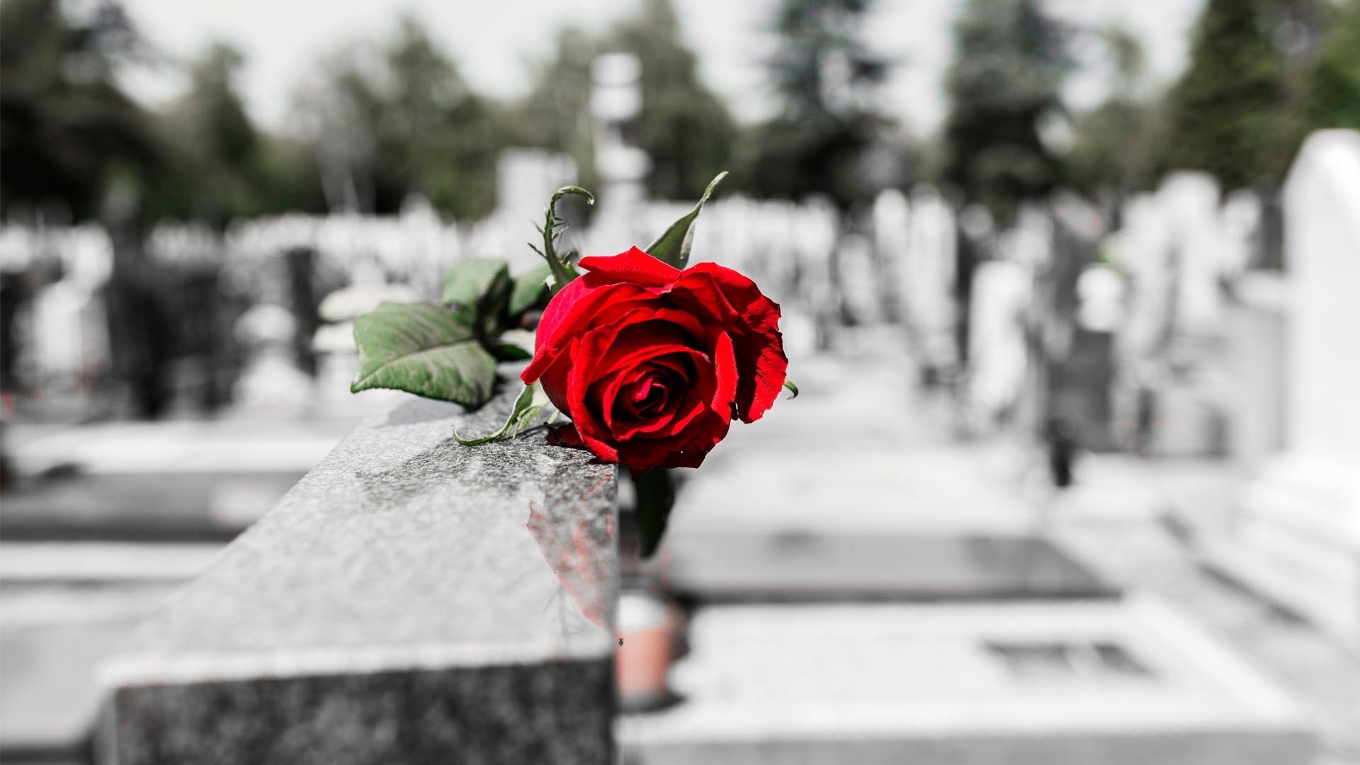 Cementerio en Ronda