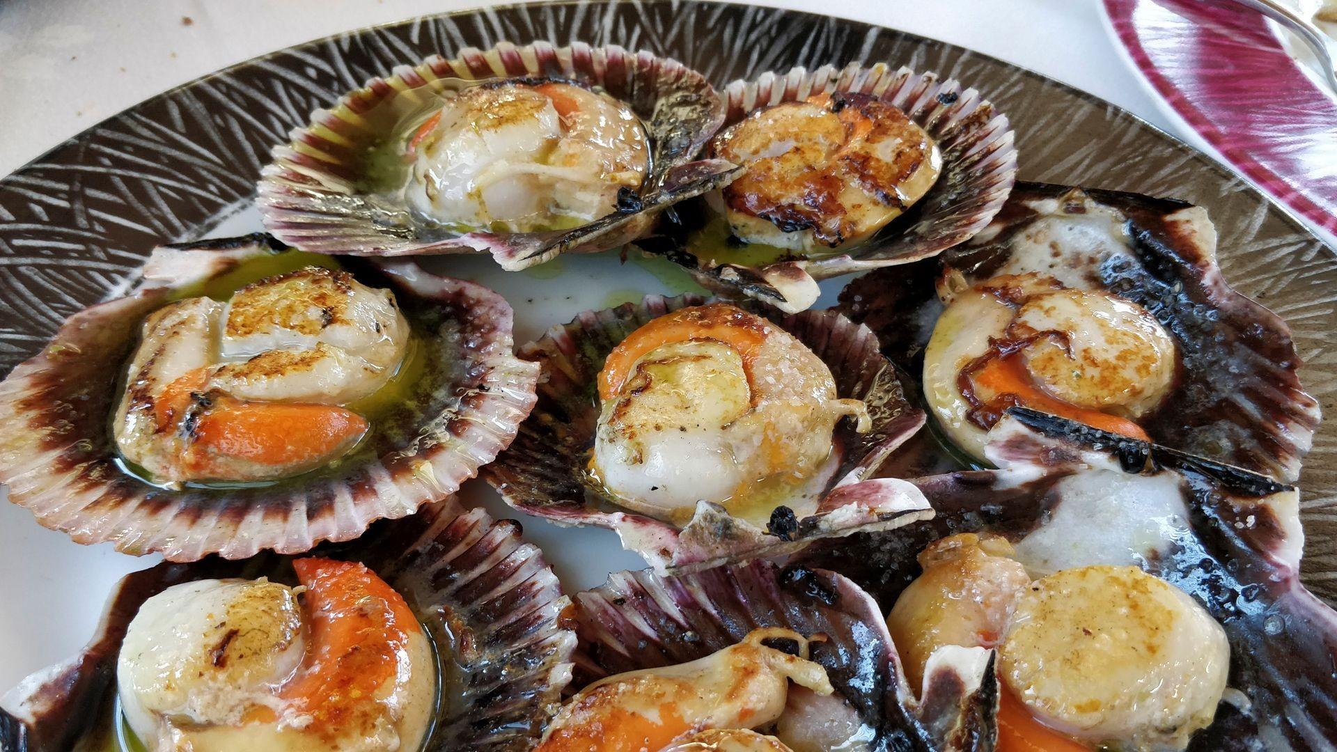 Comida gallega en Ourense