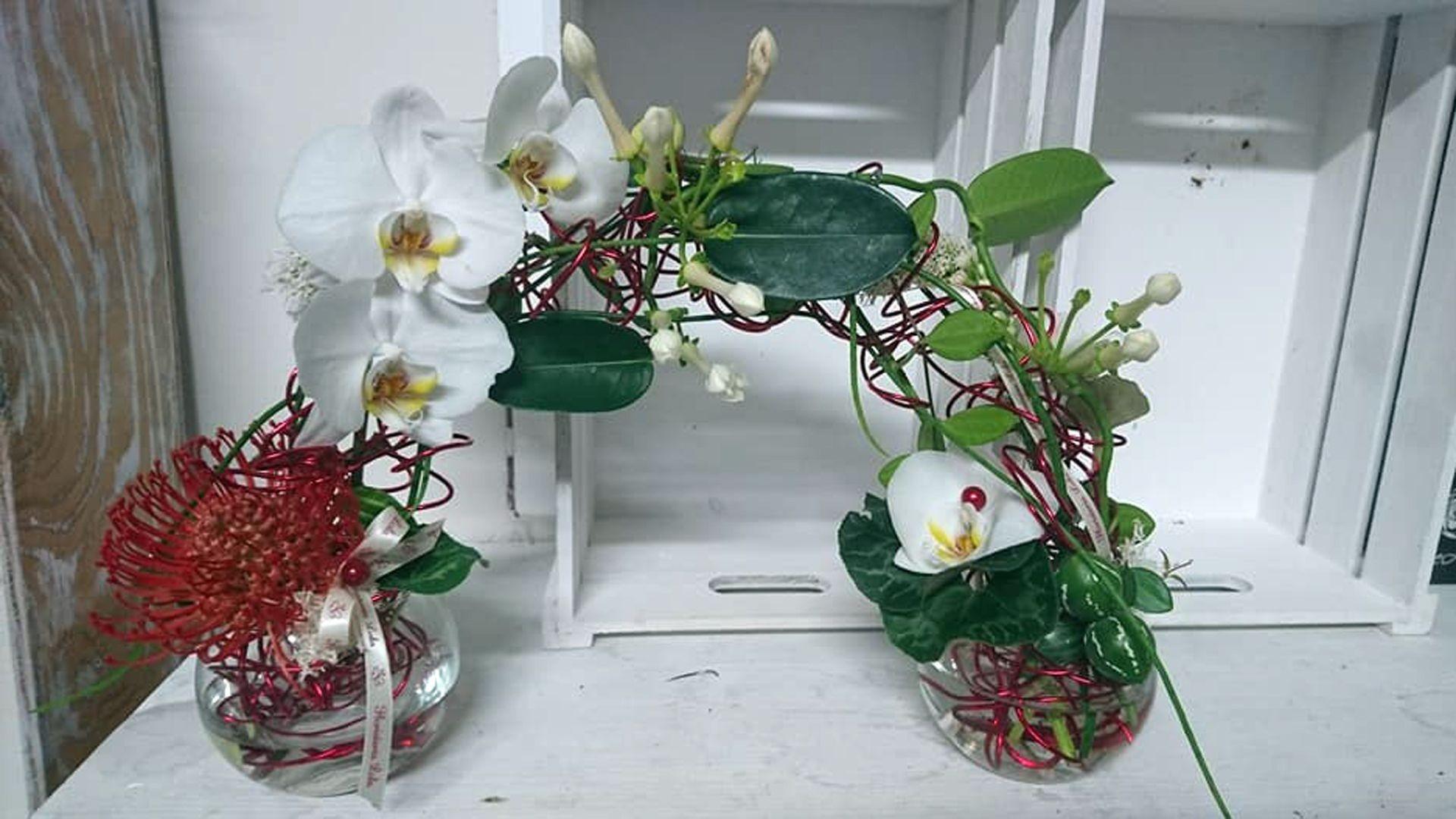 Venta de flores y plantas en Pontevedra